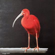 Red bird, 30х30, oil on canvas