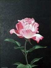 Роза, 40х30, маслени бои върху платно