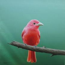 """""""Червена птица"""" - /30х30/ - м.бои/платно"""