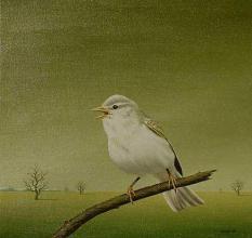 """Бяла птица"", 30х30, маслени бои/платно"