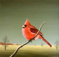 Cardinal, 30х30, oil on canvas